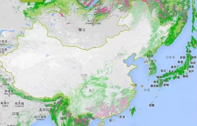 中國和周邊國家森林分佈