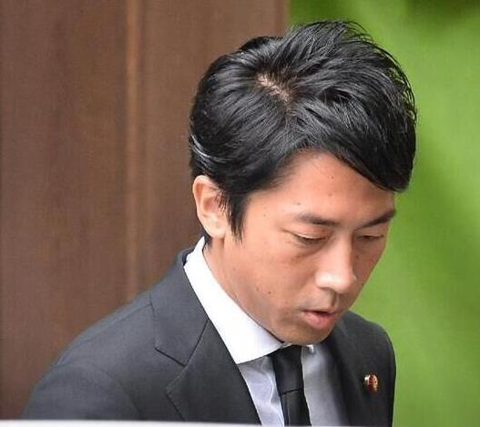 圖說: 日本自民黨農林部會長小泉進次郎。