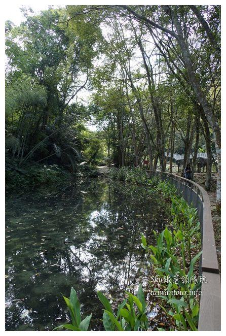苗栗南庄景點蓬萊自然生態園區42湧泉八卦力05515