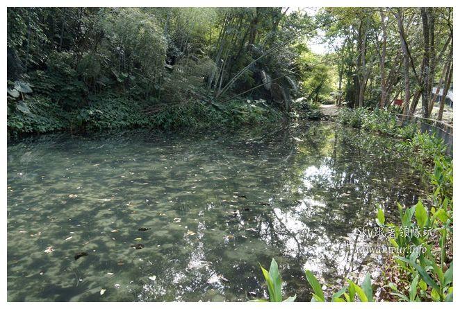 苗栗南庄景點蓬萊自然生態園區42湧泉八卦力05518