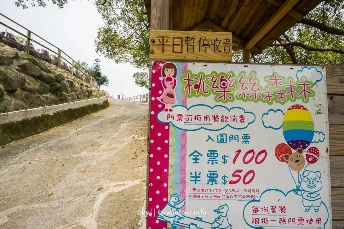 新北親子景點【桃樂絲森林(穀興農場)】八里櫻花.柚子花秘境