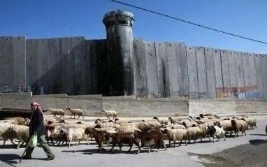 jews concrete wall 01