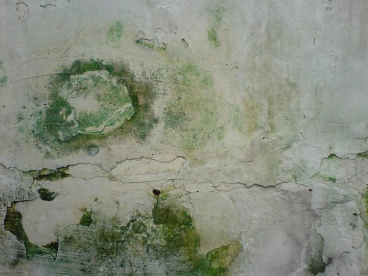 Dinding Lembap 01