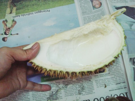 Durian 03