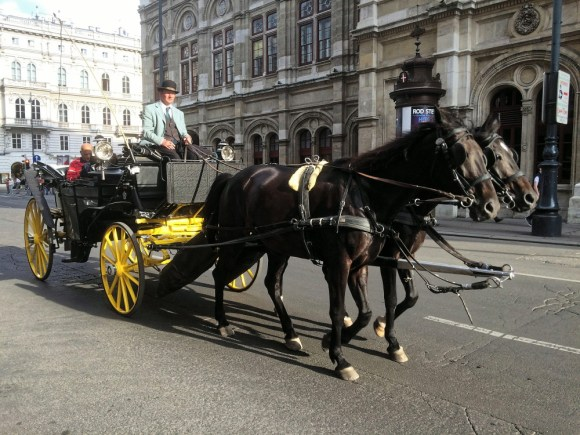 carriage_horse