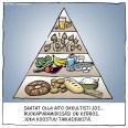 ruokapyramidi