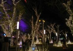 天神警固公園・イルミネーション・2014
