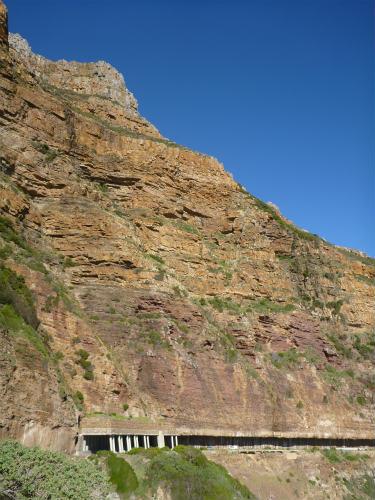 南アフリカ喜望峰 (8)
