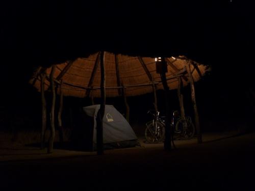 夜のプラネットバオバブ (1)