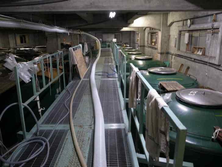 愛知県江南市の酒造を見学して日本酒の作り方を学んできたよ![楽の世] (27)