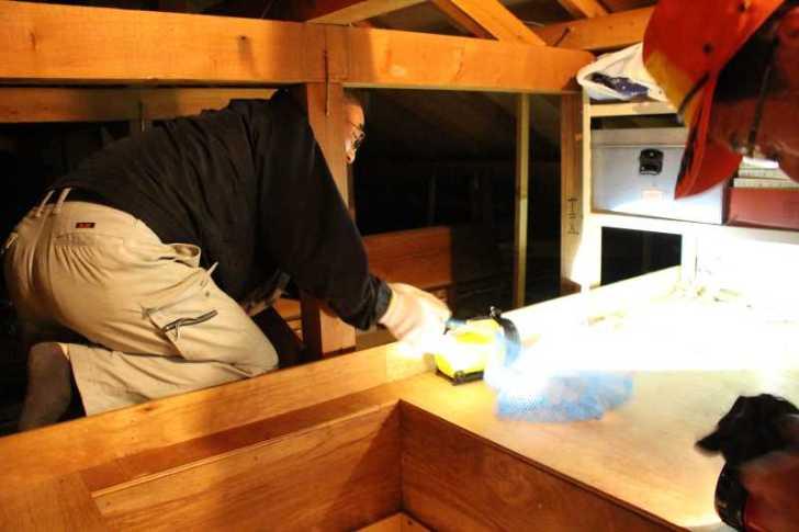 屋根裏に住み着いたハクビシンの駆除に行ってみた (7)