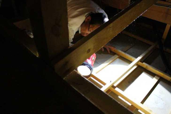 屋根裏に住み着いたハクビシンの駆除に行ってみた (4)