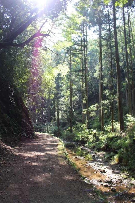 愛知県唯一の日本の滝100選である新城市「阿寺の七滝」に情緒あり (4)
