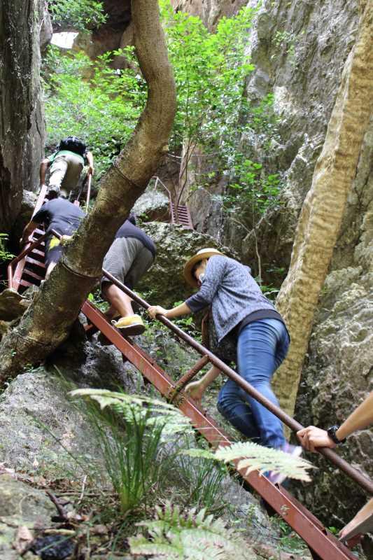 乳岩峡の川の水がきれい過ぎるので川遊び!さらにプチクライミングをしてハイキング (8)