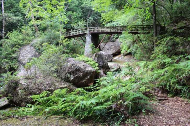 乳岩峡の川の水がきれい過ぎるので川遊び!さらにプチクライミングをしてハイキング (6)