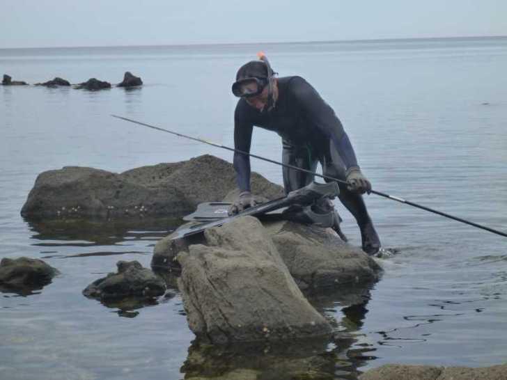 福井で魚突き!80cm弱の真鯛と40cm強の石鯛とキジハタとったどー!! (1)