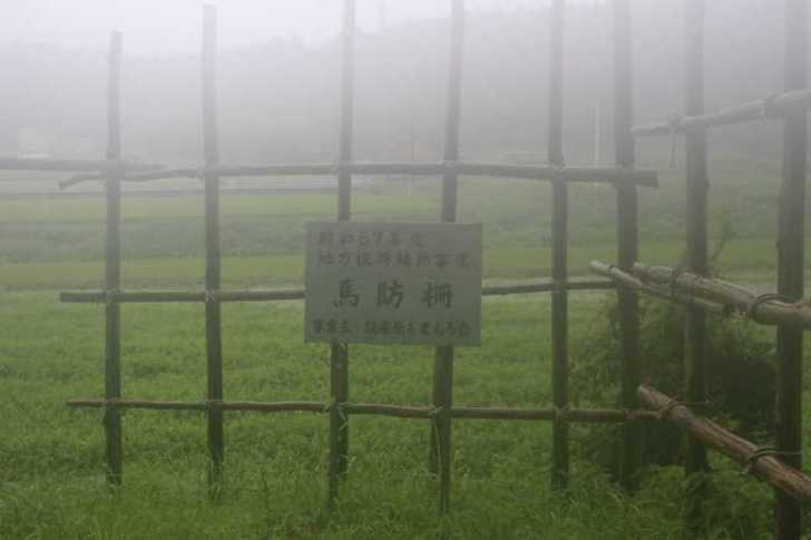 長篠の戦いで武田騎馬隊に対して織田徳川連合軍が作った「馬防柵」を考えてみる[愛知県新城市] (2)