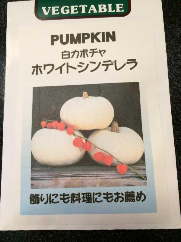 【珍しい野菜栽培】2.育てるレア野菜の種は通販で。藤田種子で発注しました! (23)