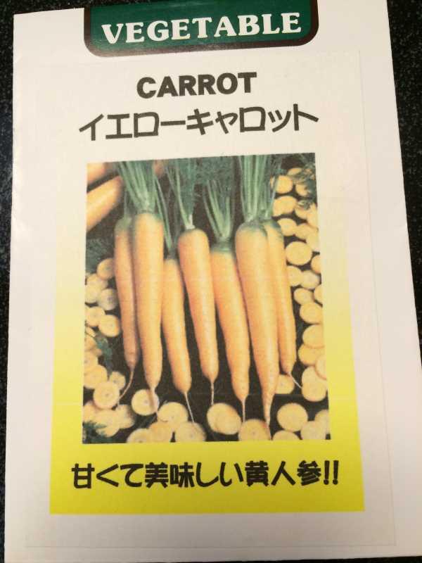 【珍しい野菜栽培】2.育てるレア野菜の種は通販で。藤田種子で発注しました! (15)