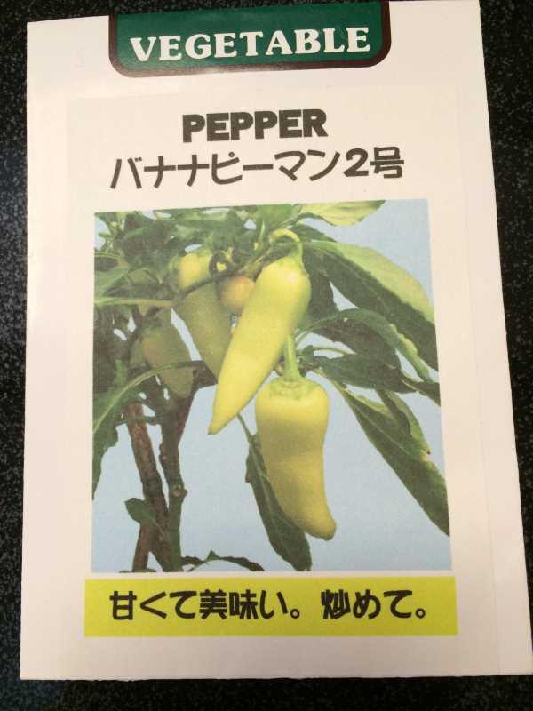 【珍しい野菜栽培】2.育てるレア野菜の種は通販で。藤田種子で発注しました! (19)