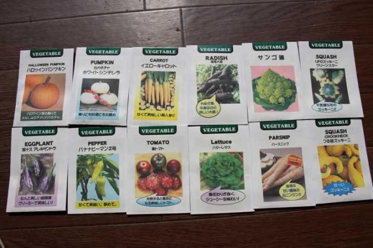 【珍しい野菜企画】2.育てるレア野菜の種は通販で。藤田種子で発注しました! (2)