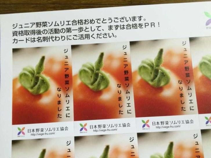 【珍しい野菜栽培】3.ジュニア野菜ソムリエの資格取得!試験に合格するには過去問が命 (1)