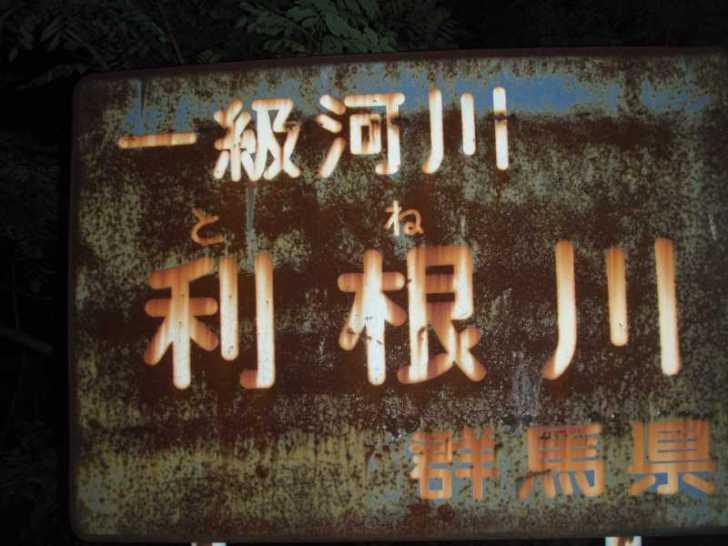 利根川のホタル (1)