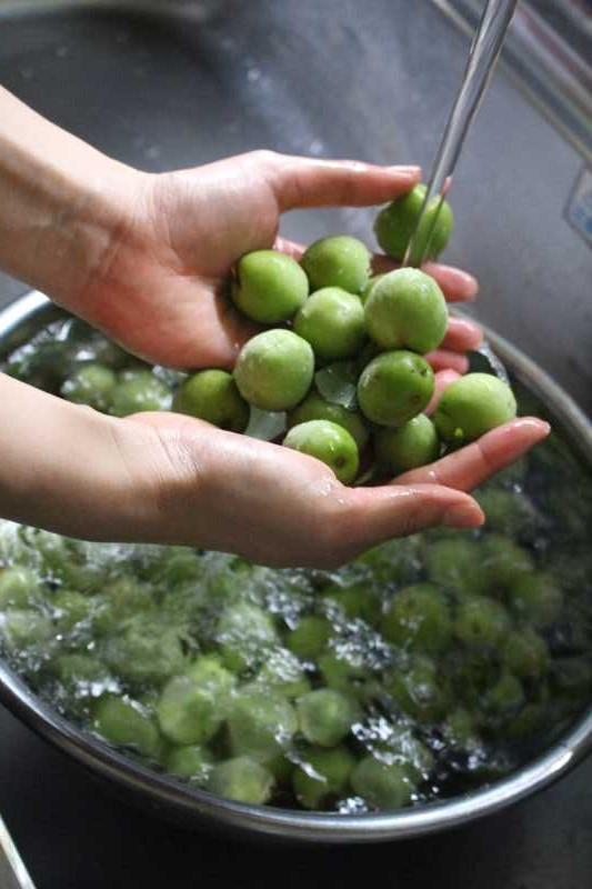 [梅酒の作り方]庭に梅がなっていたので梅酒を作ることにした! (2)