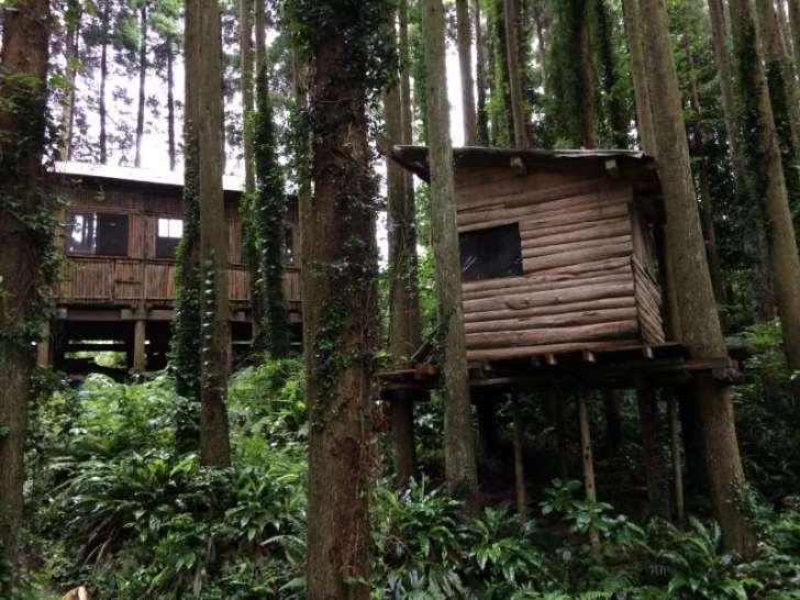 【ツリーハウスの作り方】ガンコ山の講習でセルフビルドしてきたよ!