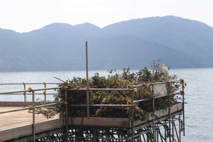 滋賀の絶対行くべきおすすめ観光スポットは「沖島」で決まり! (17)