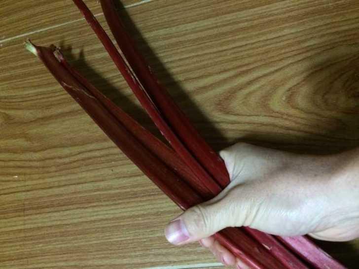 真っ赤なルバーブのジャムを作ってみた!作り方は砂糖を入れて混ぜながら煮込むだけ! (2)