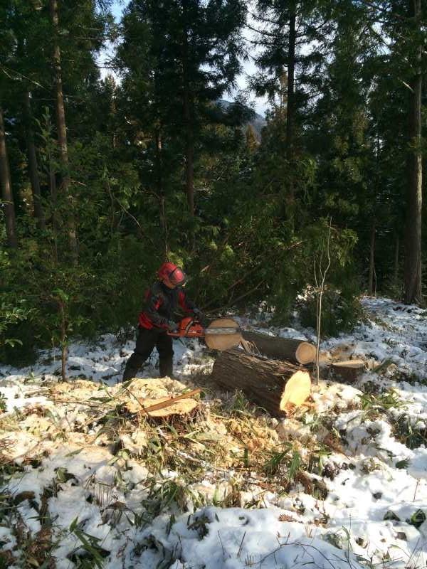 おむすビーズの林業インターンシップに行ってきたよ!【高知県土佐町れいほく地域】 (13)