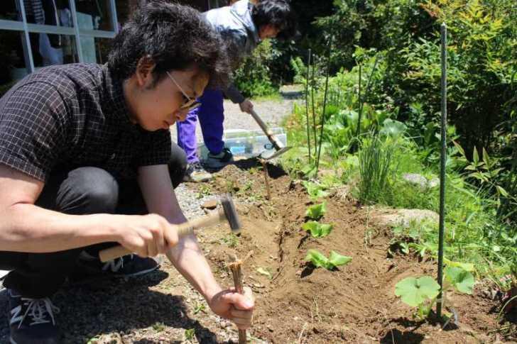 草刈りを手伝ってもらったり、耕運機を手伝ってもらったりしたおかげ (2)
