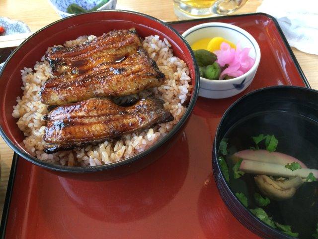 浜松のうな慎でうなぎの刺身を食べてみた!血に毒があるのに生でどうやって食べるのか? (11)