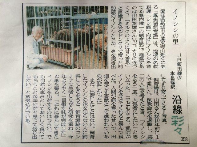 イノシシを飼育している山田さんと、解体した猪のモツ祭りでヒャッハー!【愛知県新城市】