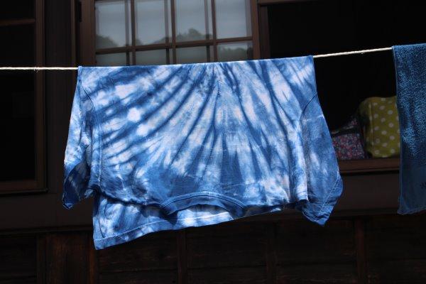 草木染め染色体験ふたたび。藍染めTシャツの作り方を研究してみたよ! (10)