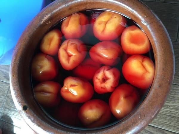梅を干して梅干しに!市販されているものよりしょっぱいけれど、昔ながらの梅干しという感じ (1)