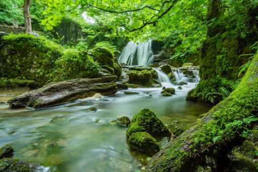 waterfalls in forest
