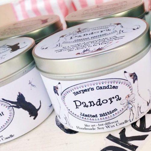 Harper's Candles Pandora bij tAK