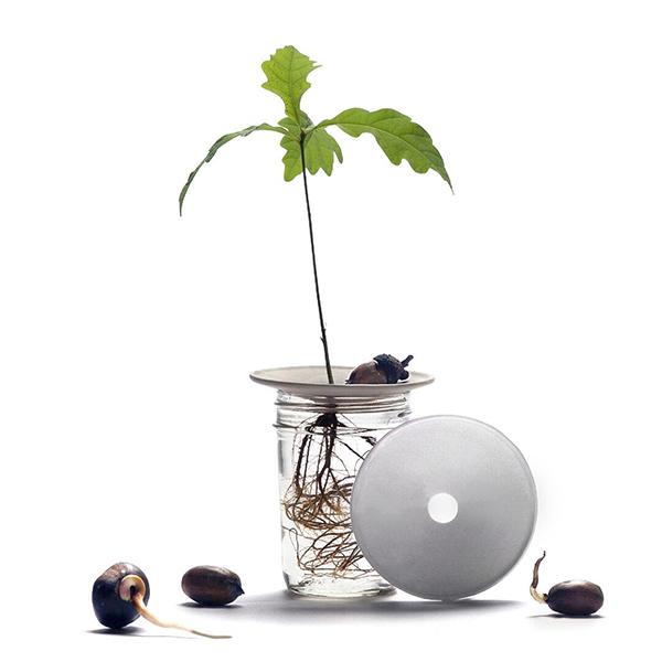 Botanopia Sprout Small porseleinen kweekschaaltje