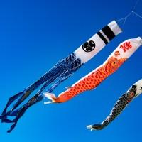 【Photo】八王子山公園(太田市北部運動公園)の鯉のぼり