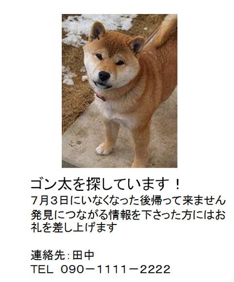愛犬の捜索依頼のポスター