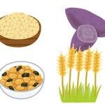 レジスタントスターチ食品は便通を良くしてダイエットにも効果あり