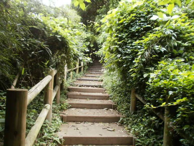 神奈川県旅行観光横須賀市猿島