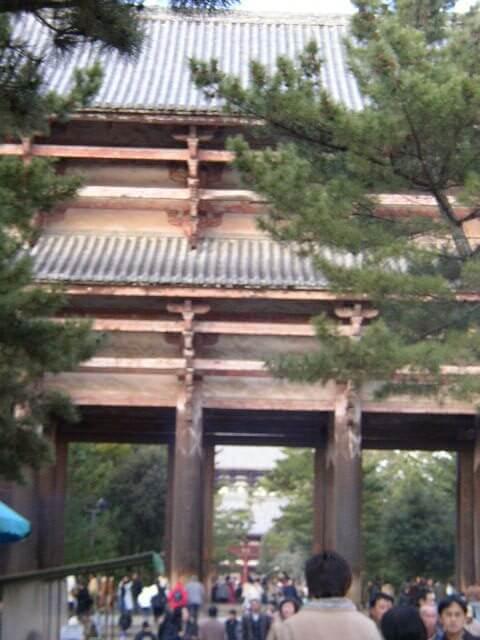 奈良県奈良公園の東大寺