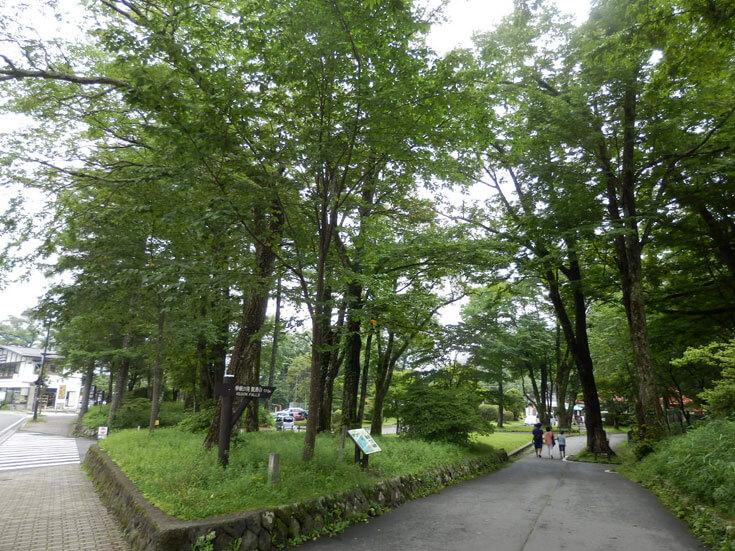 栃木県日光市華厳の滝