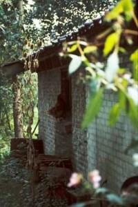 The Cottage, Achterdijk 27, 1988