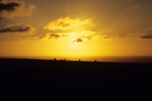 Sunset just before the Green Ray, Lundy, 1988