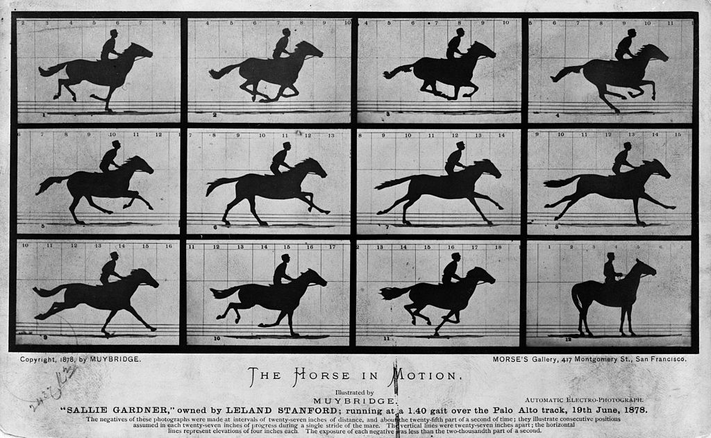Urutan animasi kuda karya Eadweard Muybridge (Wikipedia)