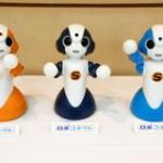 【記事】NTT、コミュニケーションロボットに機能を付加するクラウドサービス「ロボコネクト」提供開始